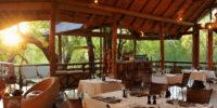 Madikwe-Lodge 8