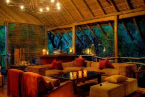 Jacis-Tree-Lodge-lounge-is-exposed-to-the-surrounding-trees-and-nature