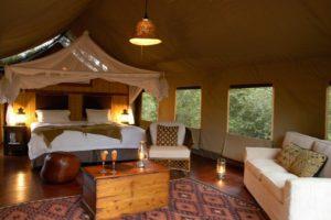 Madikwe-Room pic