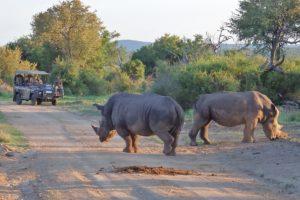 Thakadu-River-Camp-Madikwe-Game-Reserve